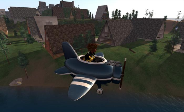 Warbug Patrol: keeping the skies over Linden homes free from...errr....