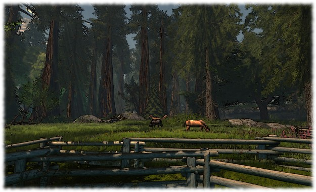 Calas Galadhon: horses gazing in Mirrormere