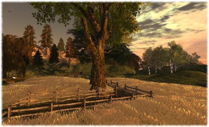 Quiet Wilderness