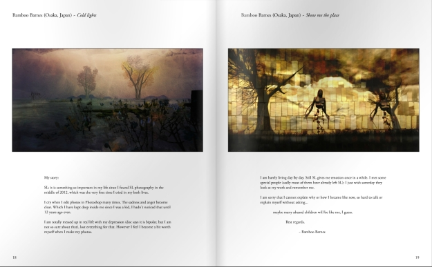 The Freedom Project book is lavishly compiled and presents both the artists and their work beautifully