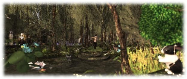Mistwood Isle woods