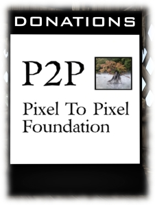 The 3LI P2P donation Kiosk is available as a part of the P2P fund-raising kit available from the P2P HQ