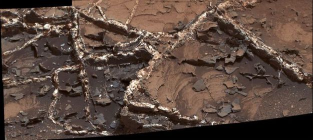 "Prominent mineral veins at the ""Garden City"" site examined by NASA's Curiosity Mars rover vary in thickness and brightness, as seen in this image from Curiosity's Mast Camera (Mastcam). The image covers and area roughly 2 feet (60 centimeters) across. Types of vein material evident in the area include: 1) thin, dark-toned fracture filling material; 2) thick, dark-toned vein material in large fractures; 3) light-toned vein material, which was deposited last."
