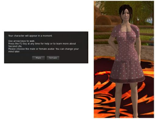 "As the gateway has to use the ""old"" SL registration API, users do not get to select the gender of their avatar until after they log-in (left), and are then defaulted to either the female or male Character Test avatar"