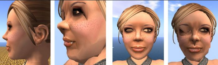 The issue of facial distortions at altitude when using software skinning in Bento has yet to be fully resolved (images courtesy of Cathy Foil)
