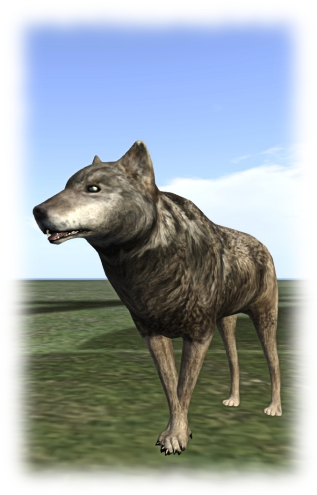 Medhue demonstrates the forleg crossing using his wolf avatar. The issue is a lot more extensive than this, with the avatar sometimes looking as if it is standing with forelegs folded in the same way a human folds their arms