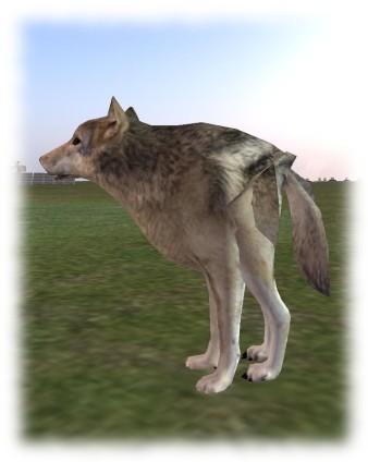 wolf-2_001