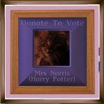 Mrs Norris