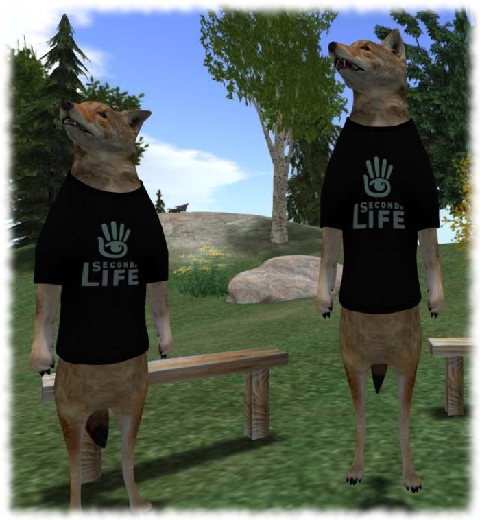 Medhue Simoni (l) and Coyot Linden (r) wearing the upright coyote avatar Medhue made for Coyot, attending the June 16th Bento meeting
