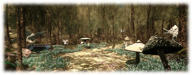 Haven Haven Gateway provides a wide range of facilities and environments across, over and under the region for news to experience and enjoy - such as the forest walk, which provides a natural introduction to exploring regions in SL and interacting with in-world objects