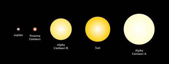 Proxima Cantauri compared with other stellar bodies - and Jupiter (Credit: Space.com)