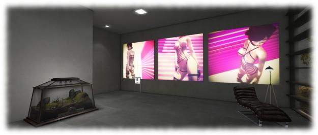 DiXmiX Gallery: Megan Prumier