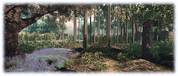 Holly Kai Park: new trails