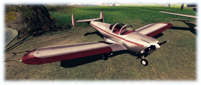 The DSA Aerohawk in its supplied finish