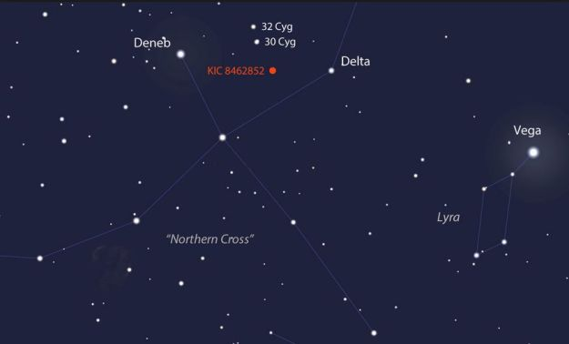 """If you have access to a 15-cm (6-in) or larger telescope you should be able to see """"Tabby's Star"""" if /when Cygnus is above your night-time horizon"""