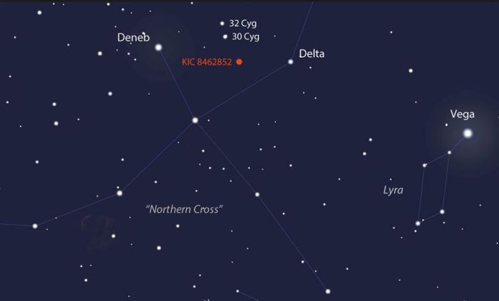 "If you have access to a 15-cm (6-in) or larger telescope you should be able to see ""Tabby's Star"" if /when Cygnus is above your night-time horizon"